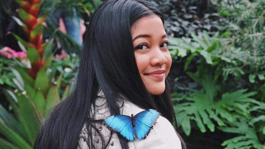 Un immense «festival» de papillons débarque à MTL