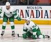Les recrues Auston Matthews et Mitch Marner comptent déjà 57 et 56 points respectivement chez les Maple Leafs.
