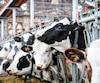 Une ferme laitière de Laval, en décembre 2018 (photo à titre illustratif).