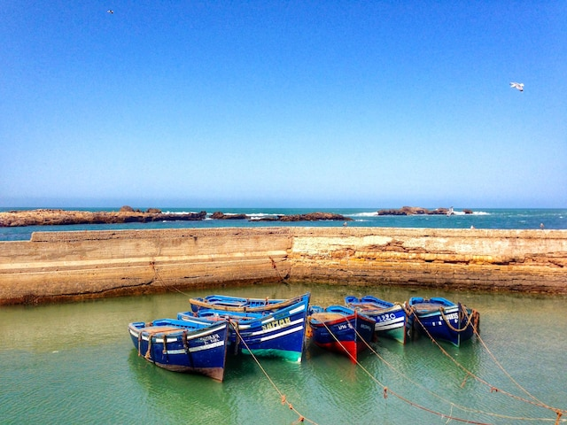 Paysages bucoliques sur le port d'Essaouira.