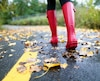 Bloc pluie automne