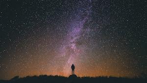 Image principale de l'article Allez voir les étoiles filantes d'octobre
