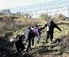 Des migrants honduriens rentraient aux États-Unis après avoir franchi la barrière frontalière le 6 janvier dernier à Tijuana, au Mexique.