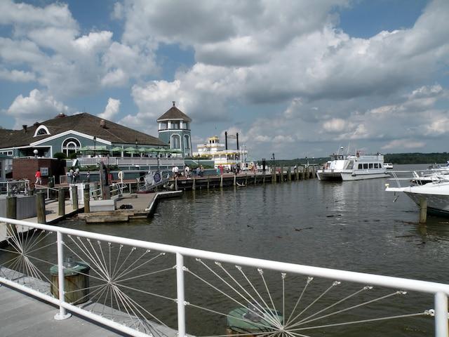 Plusieurs excursions sont proposées à partir du parc portuaire.