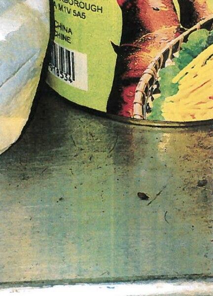 Des coquerelles mortes sur des contenants et tablettes.