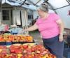 Catherine Valton, propriétaire d'une ferme biologique en Montérégie, se dépêche de remplir ses caissettes de légumes pour ne pas perdre sa récolte à cause de la canicule.