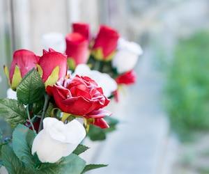 Bloc condoléances décès funérailles