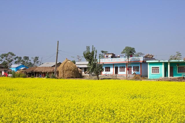 Dans un village, Chitwan National Park.