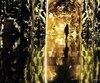Tenue au Cipriani 25 Broadway, l'expérience SuperReal est composée de 5 environnements distincts nommés Imagination Pollination (Imagination pollinisation), Float Parade (Char allégorique), These Walls (ces murs), Here and There (Ici et ailleurs) et Alone Together (Seuls ensemble).