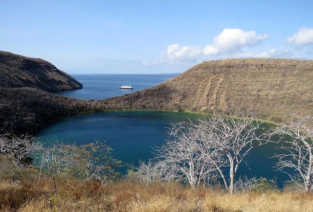 À Caleta Tagus sur l'île Isabella, dans l'archipel des Galpagos, une randonnée mène au sommet du volcan Darwin d'où l'on peut admirer le lac Darwin situé dans son cratère. Sur cette photo, au loin, le navire Silver Galápagos.