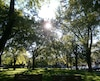 bloc parc soleil Montréal