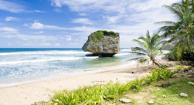 Bathsheba, sur la côte est de la Barbade.