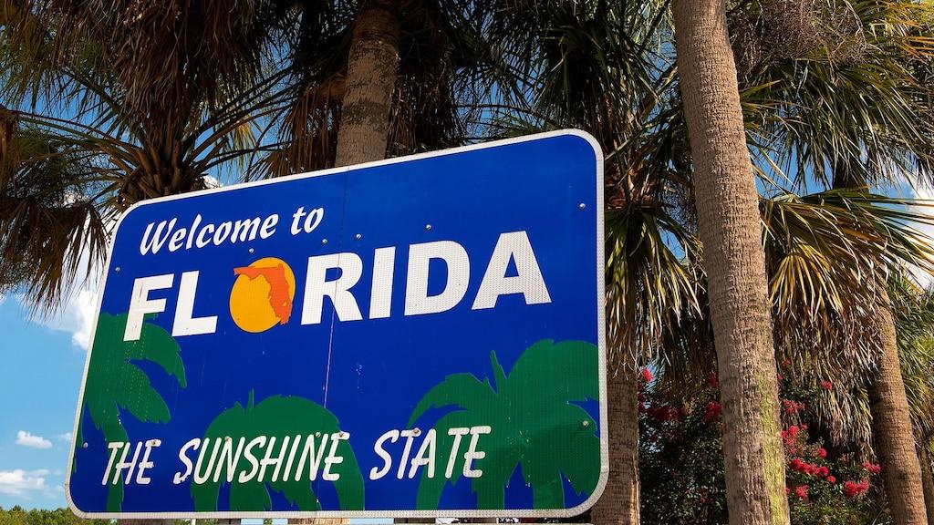 À la découverte d'une Floride méconnue