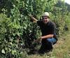 Anthony Carone, du Vignoble Carone à Lanoraie, est fier de ses vignes cette année.