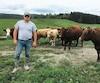 Guillaume Lachaine devant ses vaches et veaux sur le terrain où il s'est fait voler une partie de son bétail.