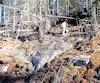 Des travaux d'exploration en surface à Rivière Doré sont réalisés par Ressources Cartier, l'ancien proprio des droits miniers avant 2011, au nord de la réserve La Vérendrye.
