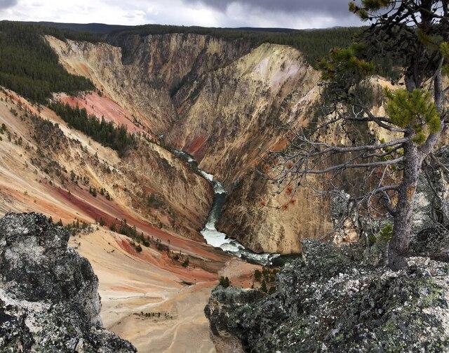 La vue sur le Grand Canyon de la rivière Yellowstone est l'une des plus impressionnantes du parc.