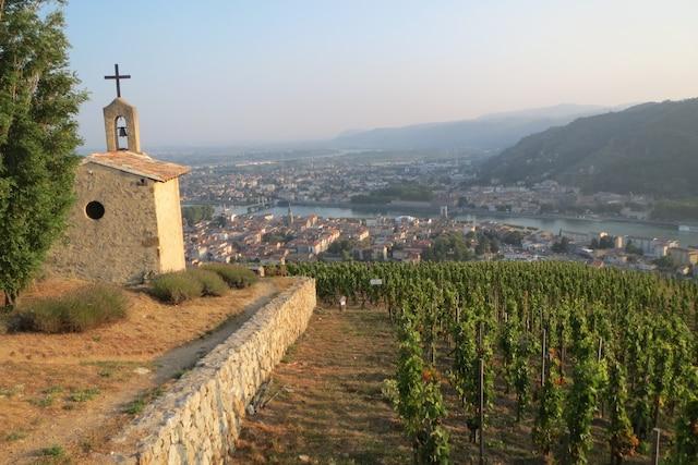 Vue sur le Rhône de la colline du vignoble de Crozes-Hermitage.