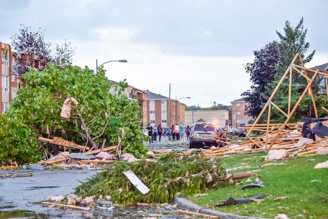 Structures de bois et arbres n'ont pas résisté dans cette rue résidentielle.