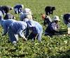 bloc agriculture, travailleurs