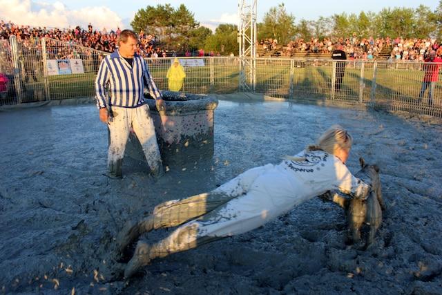 Les cochons ne sont pas maltrait s dans ce genre de rituel l jdm - Papa cochon a la piscine ...