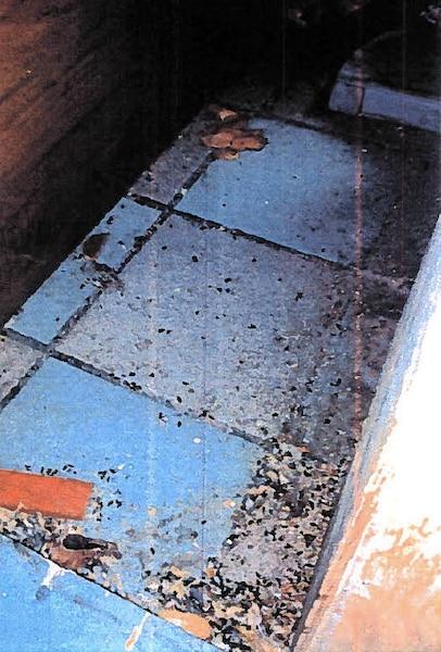 Sous une pile de sacs de riz, les inspectrices ont constaté la présence d'un nombre important d'excréments de rongeurs mêlés à des débris alimentaires séchés.