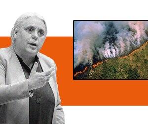 Elle partage une photo de l'Amazonie qui brûle