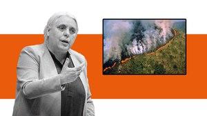 Image principale de l'article Elle partage une photo de l'Amazonie qui brûle