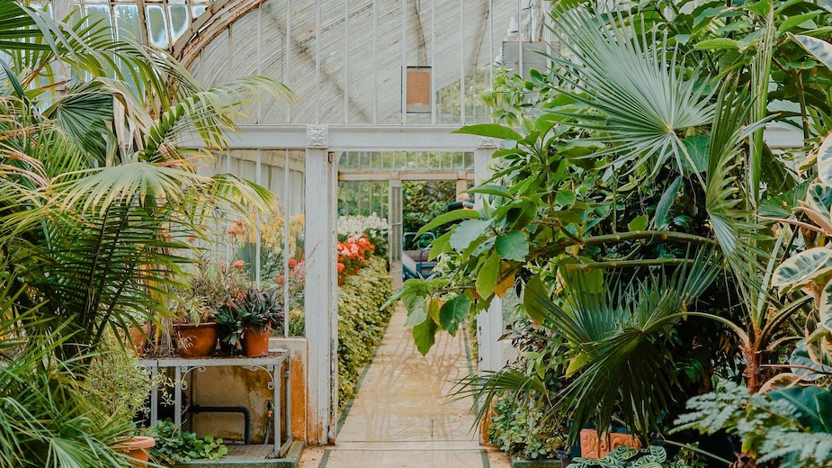 Jardiner écologiquement: par où commencer?