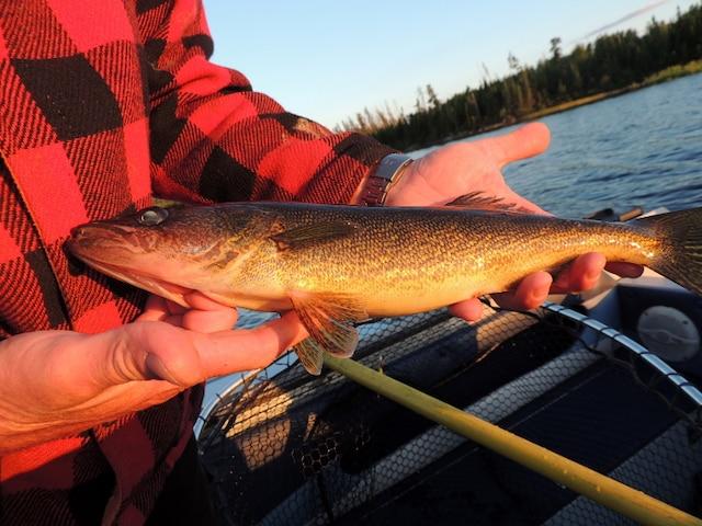 Pêche au Rapide-Sept