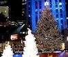 Montréal souhaite trouver un sapin d'au moins 28 mètres pour détrôner l'arbre de Noël du Rockefeller Center.