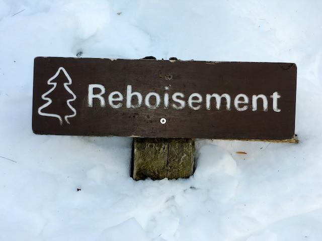 Cette affiche indique un secteur où un reboisement a été requis à la suite du piétinement hors sentier.