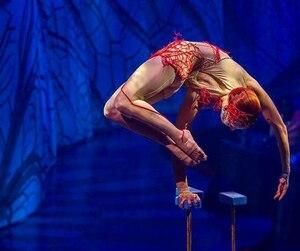 Cirque du Soleil JOYÀ