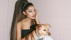 Vous devez voir la collection Ariana Grande + H&M