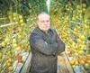 Le président de Serres Sagami, Stéphane Roy, qui est un important producteur de tomates, a décliné l'invitation de groupes d'investisseurs pour produire du cannabis.