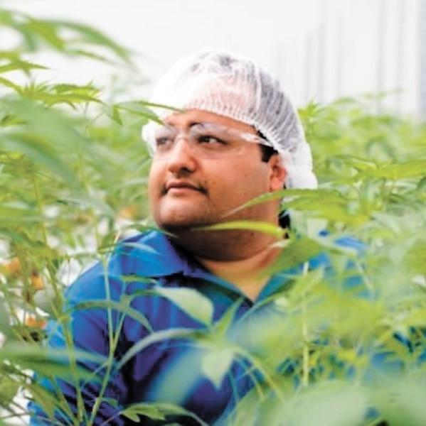 John Fowler<br /> Supreme Cannabis<br />4,2M$