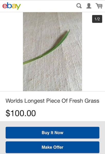 24 choses vraiment bizarres que vous pouvez acheter sur eBay ...