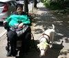 «Ces règlements sont infantilisants, on m'impose ce qui est bon pour moi. On se sent comme des citoyens de seconde zone», dénonce Linda Gauthier, qui circule en fauteuil roulant motorisé depuis 2001. Elle s'oppose vivement au projet pilote qui vise à encadrer l'utilisation des quadriporteurs.