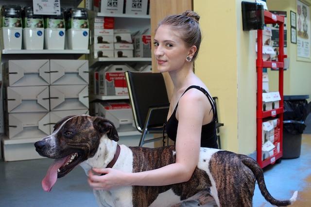 Van Gogh et sa nouvelle maîtresse Leah Lisacek. Ce pittbull croisé, trouvé errant le 25 juin, s'est vite trouvé une nouvelle maison.
