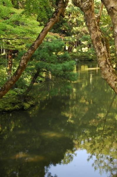 L'étang d'Or et ses îles constituent l'élément central de la partie inférieure du jardin du Saiho-ji.