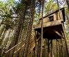 Une cabanita, à cinq mètres de haut dans les arbres.