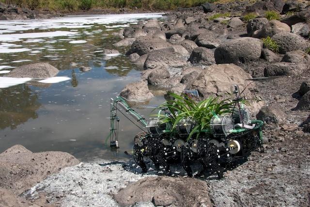 Plantas nómadas<br /> L'exposition comprend aussi un film extrait du vaste projet Plantes nomades (2008-2013), relatant l'activité d'un robot biologique autonome, destiné à vivre aux abords de cours d'eau pollués.
