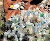Des bouteilles de plastique qui ont été ramassées par Greenpeacelors du nettoyage des berges à Montréal le 15 septembre.