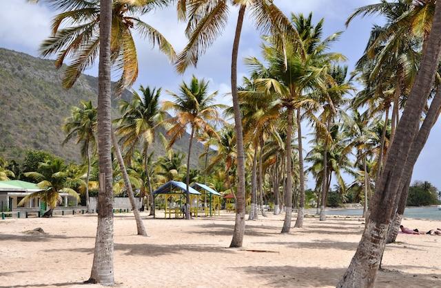L'une des plages de La Désirade.