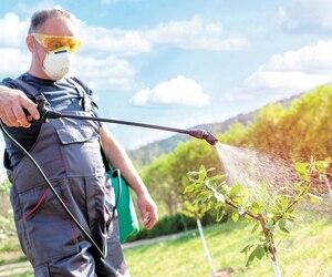 Les pesticides sont partout dans la vie courante des Québécois, des champs cultivés aux mauvaises herbes du voisin.