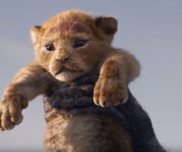 Voyez les 20 films les plus attendus de 2019!