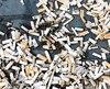 Ces mégots ont été ramassés sur une plage de Vancouver, le 21septembre.