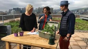 Se sentir mieux grâce à l'agriculture urbaine!