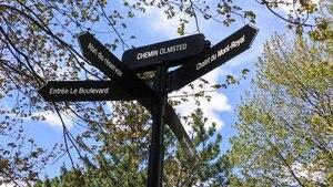 Image principale de l'article Parc du Mont Royal : un goût d'ailleurs