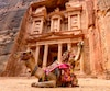 Spectacular view of two beautiful camels in front of Al Khazneh (The Treasury) in Petra. Petra is a historical and archaeological city in southern Jordan.